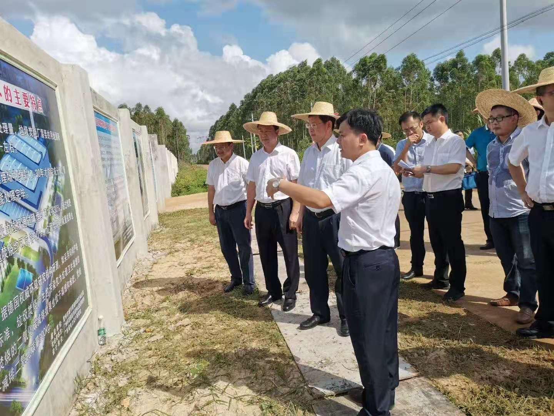 湛江市委书记、雷州市委书记率队到雷州生活垃圾焚烧发电厂现场调研